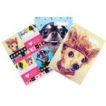 Spencil Woof Book Cover 1b5 Pack 3 Assorted | 61-113468
